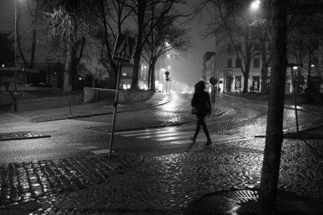 Flickr_-_Sigfrid_Lundberg_-_R0011196